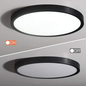 kitchen-ceiling-light-1